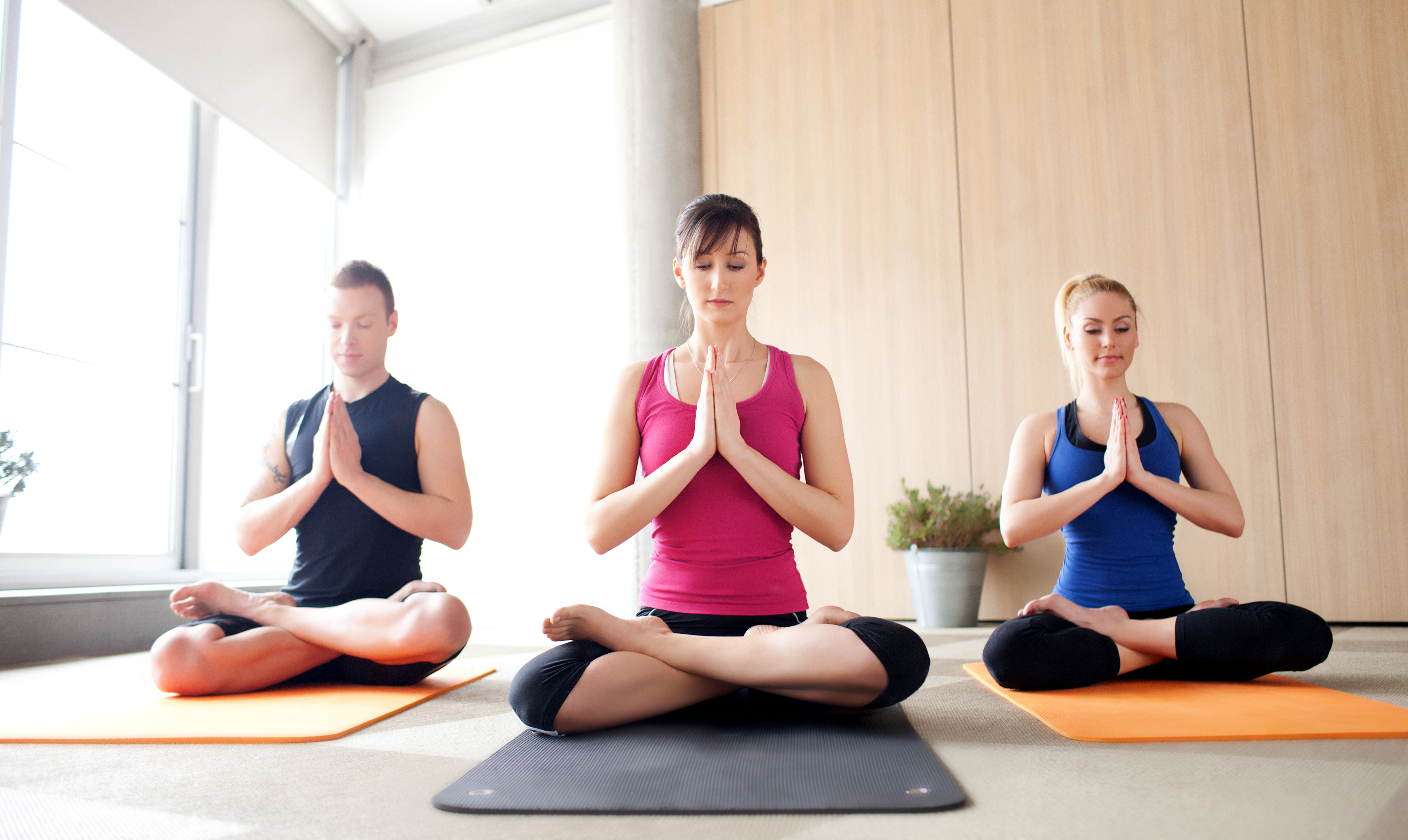 Starting Professional Carrier As Accomplished Yoga Teacher with Yoga Training and Certification